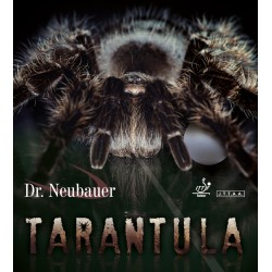 Dr Neubauer Tarantula